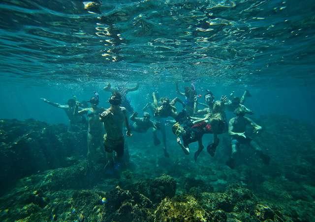 thumb_snorkeling